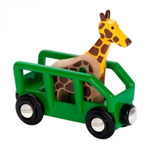 Vagón y animal safari