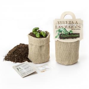 Kit siembre ecológica saquito de yute pimiento padrón