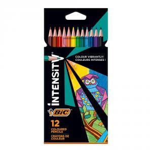 Lápiz color Intensity blíster 12 colores