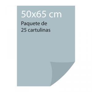 Cartulina color Gris perla Pliego Iris (25 uds)