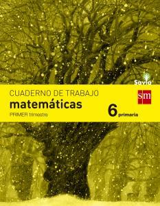 Cuaderno Matemáticas 6º Primaria 1º Trimestre