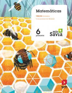 MATEMATICAS 6ºEP MADRID 19 MAS SAVIA